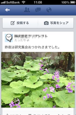 fbpage013